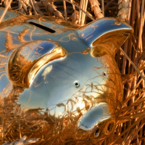 Shiny PiggyBank in a Wheat Field